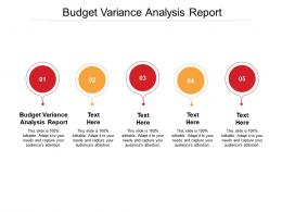 Budget Variance Analysis Report Ppt Powerpoint Presentation Summary Graphics Cpb
