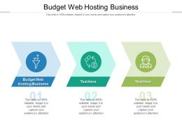 Budget Web Hosting Business Ppt Powerpoint Presentation Summary Images Cpb