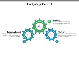 Budgetary Control Ppt Powerpoint Presentation Styles Maker Cpb