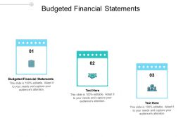 Budgeted Financial Statements Ppt Powerpoint Presentation Portfolio Examples Cpb