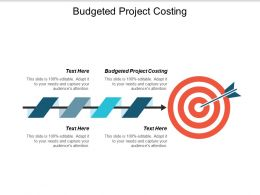 Budgeted Project Costing Ppt Powerpoint Presentation Infographics Backgrounds Cpb