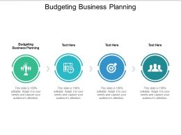 Budgeting Business Planning Ppt Powerpoint Presentation Show Design Ideas Cpb