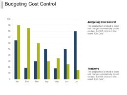 Budgeting Cost Control Ppt Powerpoint Presentation Infographic Template Diagrams Cpb