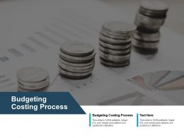 Budgeting Costing Process Ppt Powerpoint Presentation Infographics Grid Cpb