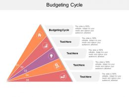 Budgeting Cycle Ppt Powerpoint Presentation File Influencers Cpb