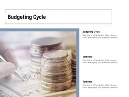 Budgeting Cycle Ppt Powerpoint Presentation Summary Ideas Cpb