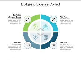 Budgeting Expense Control Ppt Powerpoint Presentation Infographics Files Cpb