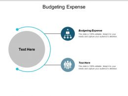 Budgeting Expense Ppt Powerpoint Presentation Infographics Icon Cpb