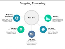 Budgeting Forecasting Ppt Powerpoint Presentation Gallery Layout Cpb