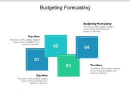 Budgeting Forecasting Ppt Powerpoint Presentation Show Format Ideas Cpb