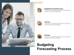 Budgeting Forecasting Process Ppt Powerpoint Presentation Slides Graphics Example Cpb