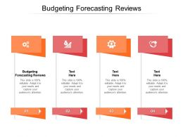 Budgeting Forecasting Reviews Ppt Powerpoint Presentation Templates Cpb