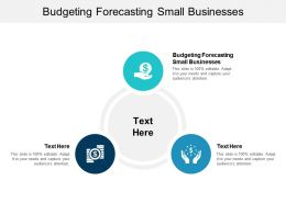Budgeting Forecasting Small Businesses Ppt Powerpoint Presentation File Model Cpb