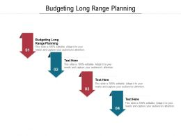 Budgeting Long Range Planning Ppt Powerpoint Presentation Icon Pictures Cpb