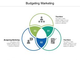 Budgeting Marketing Ppt Powerpoint Presentation Pictures Information Cpb