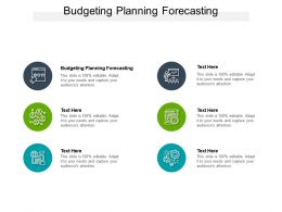 Budgeting Planning Forecasting Ppt Powerpoint Presentation Infographic Template Graphics Design Cpb