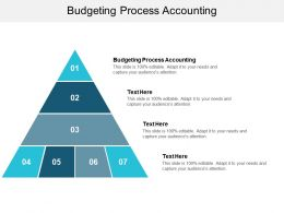 Budgeting Process Accounting Ppt Powerpoint Presentation Ideas Diagrams Cpb
