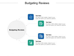 Budgeting Reviews Ppt Powerpoint Presentation Summary Elements Cpb