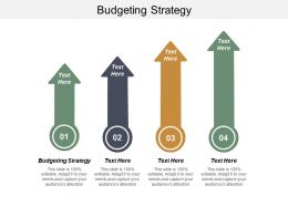 Budgeting Strategy Ppt Powerpoint Presentation Icon Slide Download Cpb