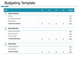 Budgeting Web Marketing Ppt Portfolio Slide Portrait