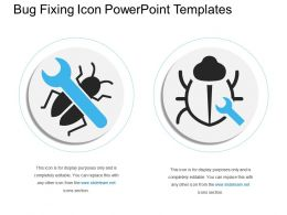 Bug Fixing Icon Powerpoint Templates