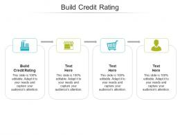 Build Credit Rating Ppt Powerpoint Presentation Show Graphics Cpb
