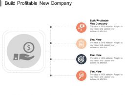 Build Profitable New Company Ppt Powerpoint Presentation File Structure Cpb