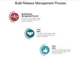 Build Release Management Process Ppt Powerpoint Presentation Inspiration Grid Cpb