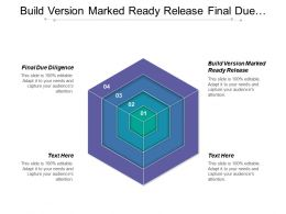 Build Version Marked Ready Release Final Due Diligence