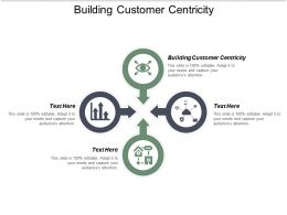 Building Customer Centricity Ppt Powerpoint Presentation Model Diagrams Cpb