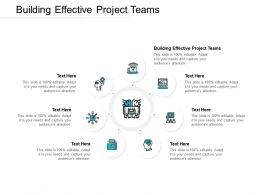 Building Effective Project Teams Ppt Powerpoint Presentation Layouts Cpb