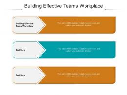 Building Effective Teams Workplace Ppt Powerpoint Presentation Pictures Information Cpb