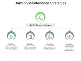 Building Maintenance Strategies Ppt Powerpoint Presentation Layouts Graphics Download Cpb
