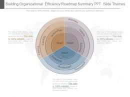 Building Organizational Efficiency Roadmap Summary Ppt Slide Themes