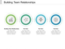 Building Team Relationships Ppt Powerpoint Presentation Professional Summary Cpb