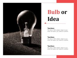 Bulb Or Idea Advertising Channels Ppt Infographic Template Clipart