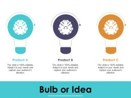 Bulb Or Idea Compensation Plan Ppt Infographic Template Visuals