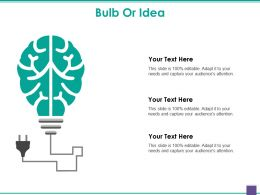 Bulb Or Idea Powerpoint Slide Rules