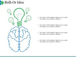 Bulb Or Idea Ppt Summary Guidelines