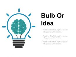 Bulb Or Idea Presentation Portfolio