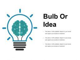 Bulb Or Idea Presentation Portfolio