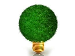 Bulb Shapes Plant Shows Green Energy Stock Photo