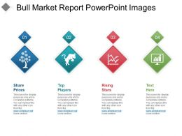 Bull Market Report PowerPoint Images