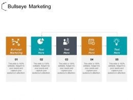 Bullseye Marketing Ppt Powerpoint Presentation File Designs Cpb