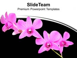 bunch_of_flowers_black_background_powerpoint_templates_ppt_themes_and_graphics_0313_Slide01