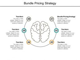 Bundle Pricing Strategy Ppt Powerpoint Presentation File Gallery Cpb