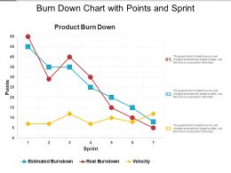 Burn Down Chart With Points And Sprint