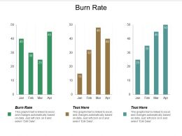 Burn Rate Ppt Powerpoint Presentation File Background Images Cpb
