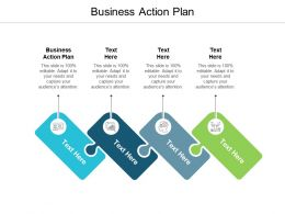 Business Action Plan Ppt Powerpoint Presentation Portfolio Visuals Cpb