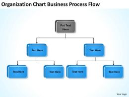 Business Activity Diagram Organization Chart Process Flow. Powerpoint Slides 0515